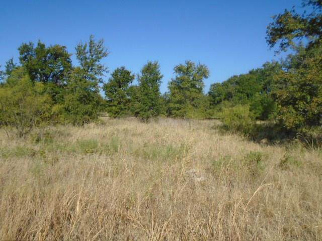 Lot 21 Bear Path Way, Brownwood, TX 76801 (MLS #14172090) :: Keller Williams Realty