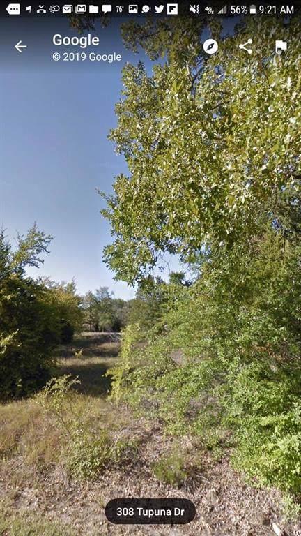 308 Tupuna Drive, Tool, TX 75143 (MLS #14173982) :: The Real Estate Station