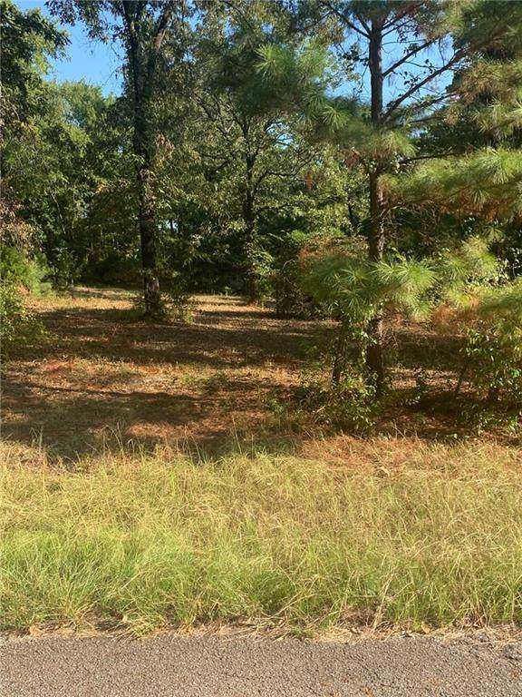 0017 Crazyhorse Drive, Lindale, TX 75771 (MLS #14177155) :: The Tierny Jordan Network