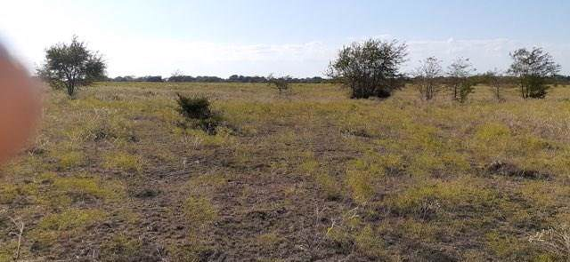 TBD Cr 4120, Campbell, TX 75422 (MLS #14178598) :: The Good Home Team