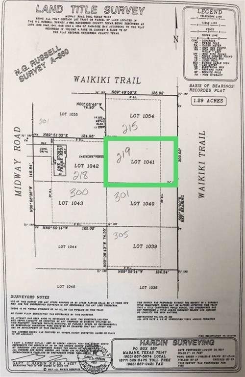 TBD Waikiki Trail, Tool, TX 75143 (MLS #14178699) :: The Real Estate Station
