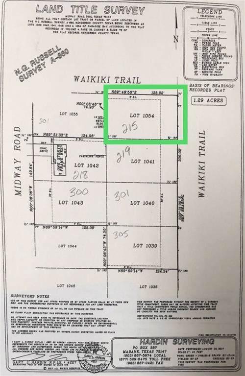 TBD Waikiki Trail, Tool, TX 75143 (MLS #14178705) :: The Real Estate Station