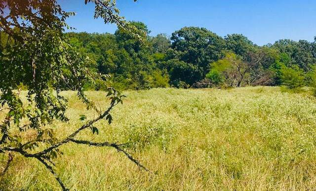 TBD 001 County Road 1858, Yantis, TX 75497 (MLS #14179489) :: The Heyl Group at Keller Williams