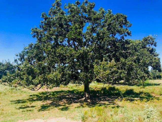 TBD 002 County Road 1858, Yantis, TX 75497 (MLS #14179497) :: Robbins Real Estate Group