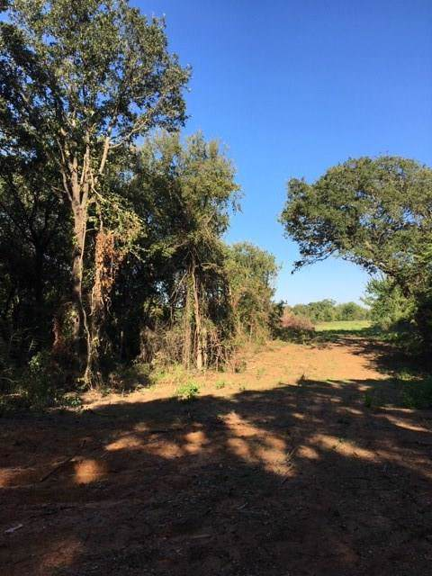 3687 New Hope Road, Aubrey, TX 76227 (MLS #14182287) :: The Real Estate Station