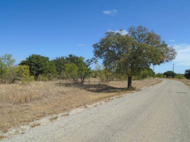 Lot 704 Kings Point Cove, Brownwood, TX 76801 (MLS #14185623) :: The Heyl Group at Keller Williams