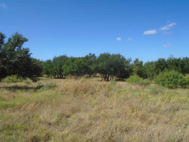 Lot 650 Feather Bay Drive, Brownwood, TX 76801 (MLS #14185657) :: The Heyl Group at Keller Williams
