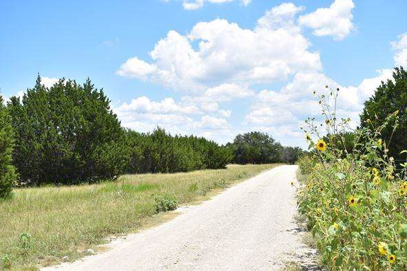 3062A County Rd 2160, Iredell, TX 76649 (MLS #14187116) :: The Heyl Group at Keller Williams