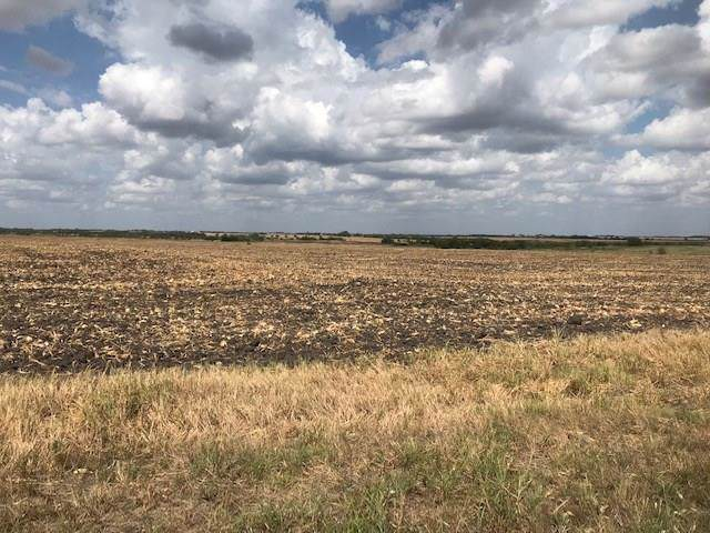 000 Dale Acres Road, Milford, TX 76670 (MLS #14188684) :: All Cities Realty