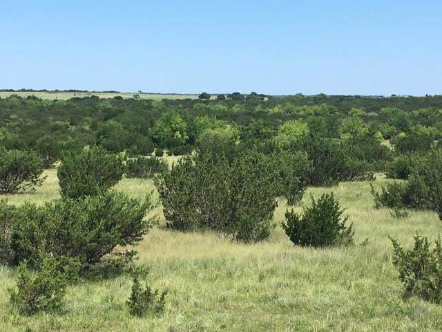 TBD Cr119, Hico, TX 76457 (MLS #14190555) :: Lynn Wilson with Keller Williams DFW/Southlake
