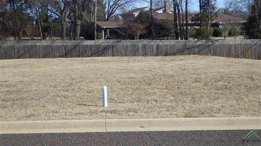 Lot 13 Kathryn, Mount Pleasant, TX 75455 (MLS #14195846) :: The Kimberly Davis Group