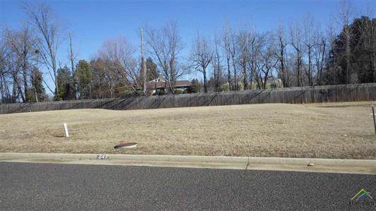 Lot 15 Kathryn, Mount Pleasant, TX 75455 (MLS #14195883) :: RE/MAX Town & Country