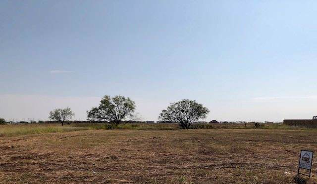 209 Rafter Drive, Tuscola, TX 79562 (MLS #14195926) :: The Good Home Team