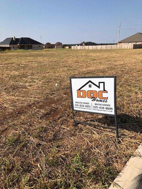 103 Addie Way, Tuscola, TX 79562 (MLS #14196610) :: The Good Home Team