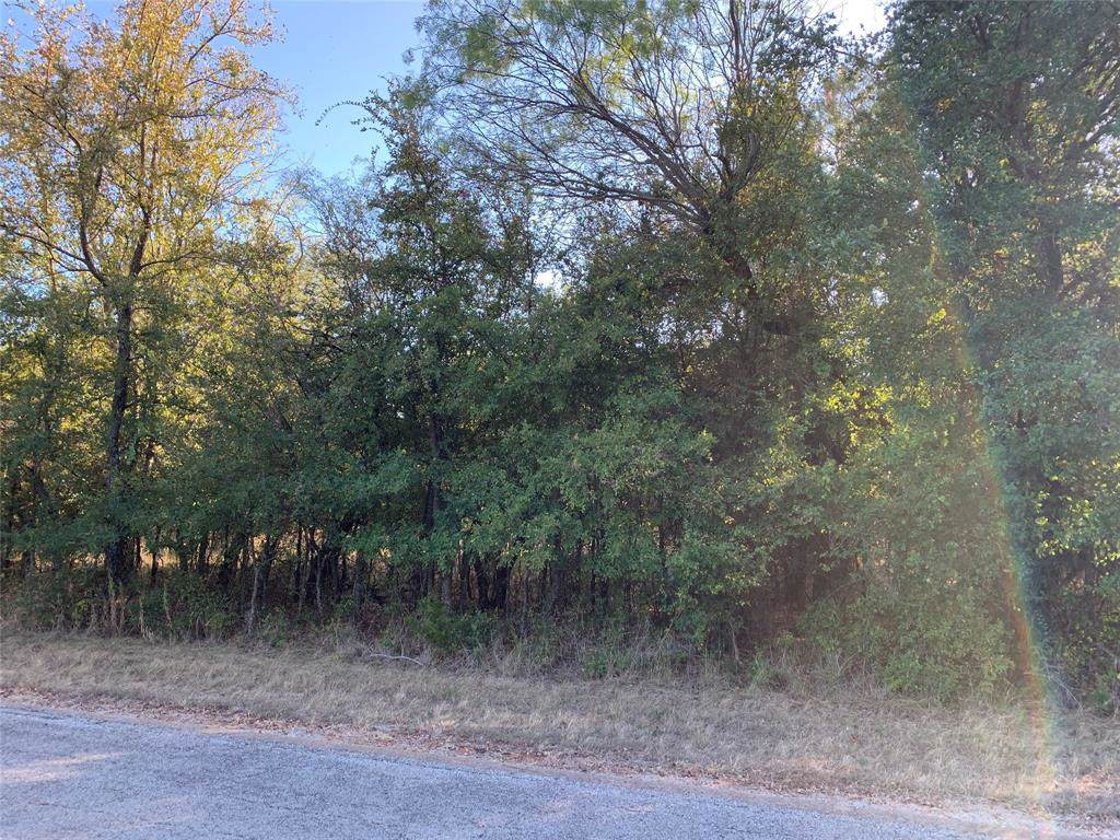 39183 Misty Ridge Drive - Photo 1