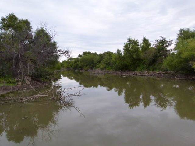 TBD Hog Creek Road, May, TX 76801 (MLS #14206267) :: Ann Carr Real Estate