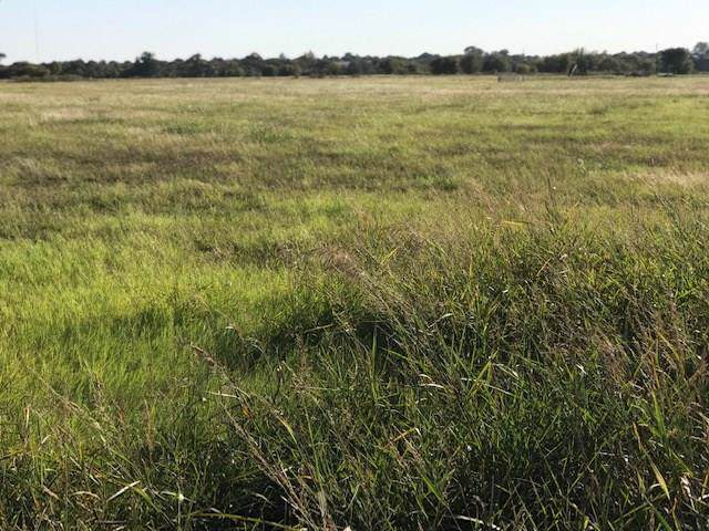TBD Broadhead Road, Waxahachie, TX 75165 (MLS #14211841) :: The Mitchell Group