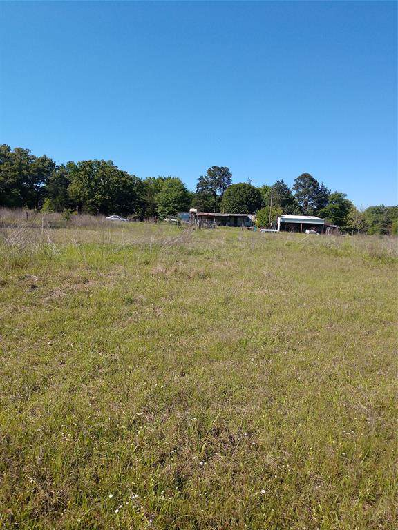 988 County Road 2416, Leesburg, TX 75451 (MLS #14211989) :: RE/MAX Town & Country