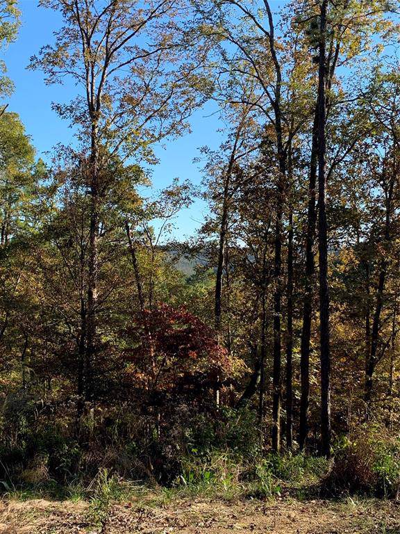 Lot 25 Split Creek, Broken Bow, OK 74728 (MLS #14215622) :: Century 21 Judge Fite Company