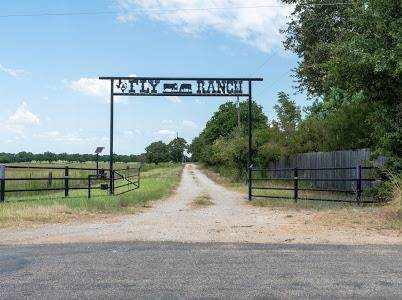4510 County Rd 120, Clyde, TX 79510 (MLS #14216044) :: Century 21 Judge Fite Company