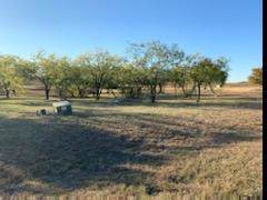 2203 Alyssum, Cedar Hill, TX 75104 (MLS #14216906) :: Robbins Real Estate Group