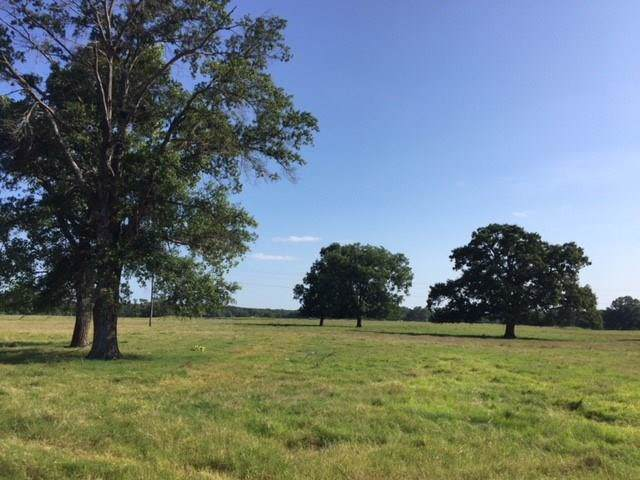 8200 Clear Springs Road, Payne Springs, TX 75156 (MLS #14216965) :: The Chad Smith Team