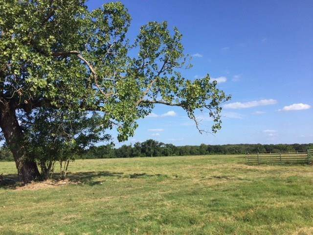 7960 Clear Creek Road, Payne Springs, TX 75156 (MLS #14219285) :: The Chad Smith Team