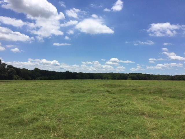 7808 Clear Creek Road, Payne Springs, TX 75156 (MLS #14219867) :: The Chad Smith Team