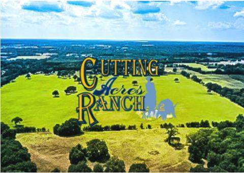8937 County Road 1500, Athens, TX 75751 (MLS #14222695) :: The Welch Team