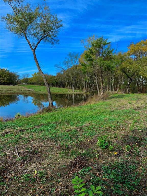 3702 W Texas Highway 56, Ector, TX 75439 (MLS #14223329) :: Hargrove Realty Group