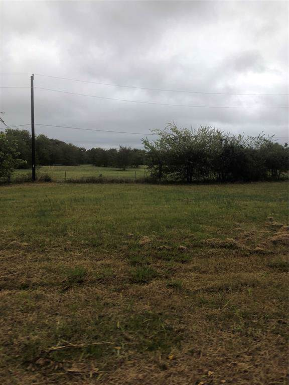 225 Opal Drive, West Tawakoni, TX 75474 (MLS #14226025) :: The Kimberly Davis Group