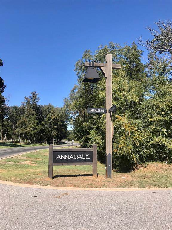 Lot 11 Annadale Lane, Gordonville, TX 76245 (MLS #14226675) :: RE/MAX Town & Country