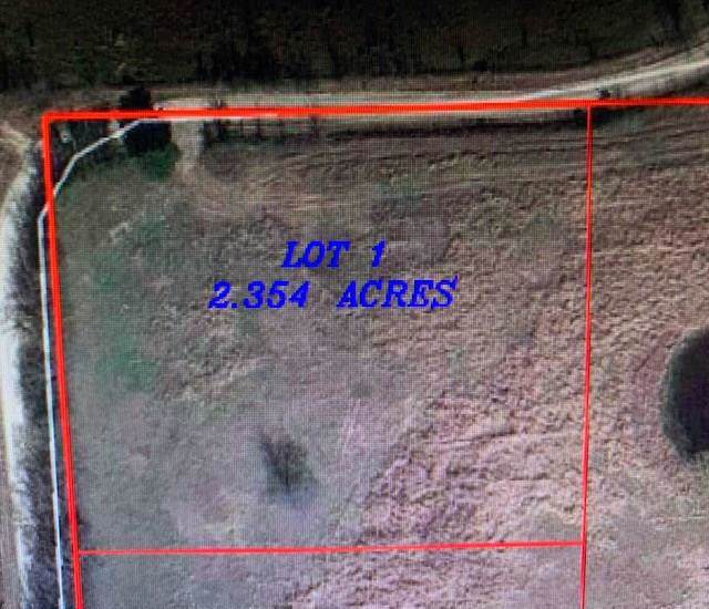 Lot 1 Cr 1310, Point, TX 75473 (MLS #14234529) :: RE/MAX Town & Country