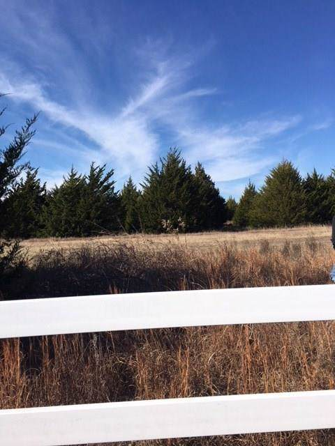 2952 County Road 219, Anna, TX 75409 (MLS #14235605) :: All Cities Realty