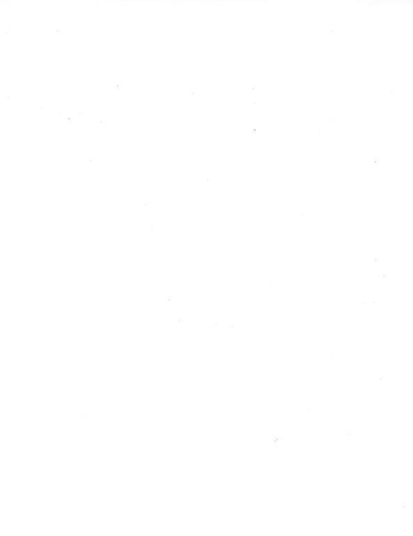 2107 Island Bayou, Bonham, TX 75418 (MLS #14235612) :: The Kimberly Davis Group