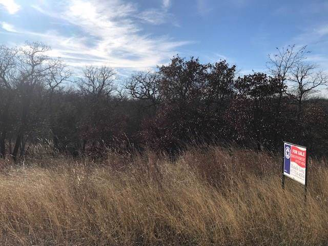Lot398 Mountain View Court, Sunset, TX 76270 (MLS #14235876) :: Robbins Real Estate Group