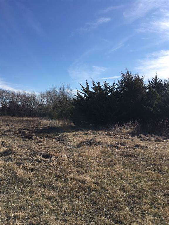 2952 County Road 219 Road, Anna, TX 75409 (MLS #14239484) :: Real Estate By Design