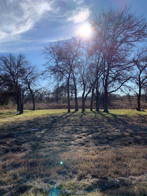 546 Roberts Run, Sherman, TX 75092 (MLS #14241083) :: The Kimberly Davis Group