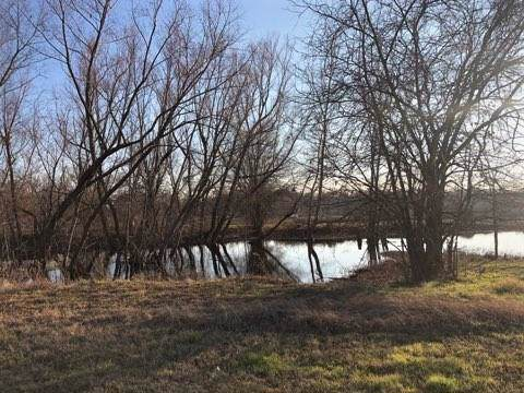 TBD County Road 4826, Wolfe City, TX 75496 (MLS #14241087) :: The Kimberly Davis Group