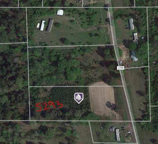 5293 County Road 239, Winona, TX 75792 (MLS #14244429) :: Team Tiller