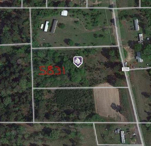 5831 County Road 239, Winona, TX 75792 (MLS #14244451) :: Team Tiller