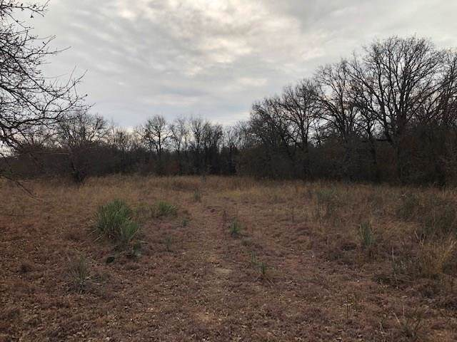00 Patton Road, Perrin, TX 76486 (MLS #14251244) :: The Hornburg Real Estate Group