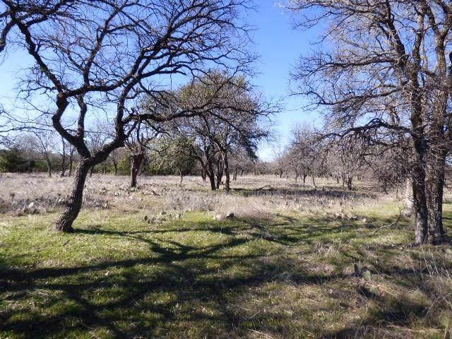 Lot 230 Ridgeline Drive, Chico, TX 76431 (MLS #14253985) :: The Chad Smith Team