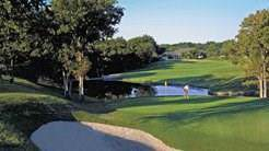 24093 Springwood Drive, Whitney, TX 76692 (MLS #14254889) :: The Mauelshagen Group
