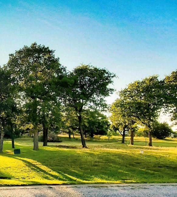 Lot 172 Oak Bend, Lipan, TX 76462 (MLS #14257249) :: Lynn Wilson with Keller Williams DFW/Southlake