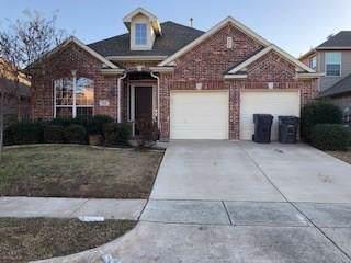 3112 Nighthawk Lane, Little Elm, TX 75068 (MLS #14257990) :: North Texas Team | RE/MAX Lifestyle Property