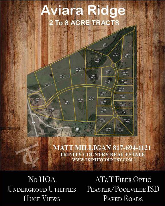 Lot 8 Aviara Ridge, Poolville, TX 76088 (MLS #14261459) :: The Tierny Jordan Network