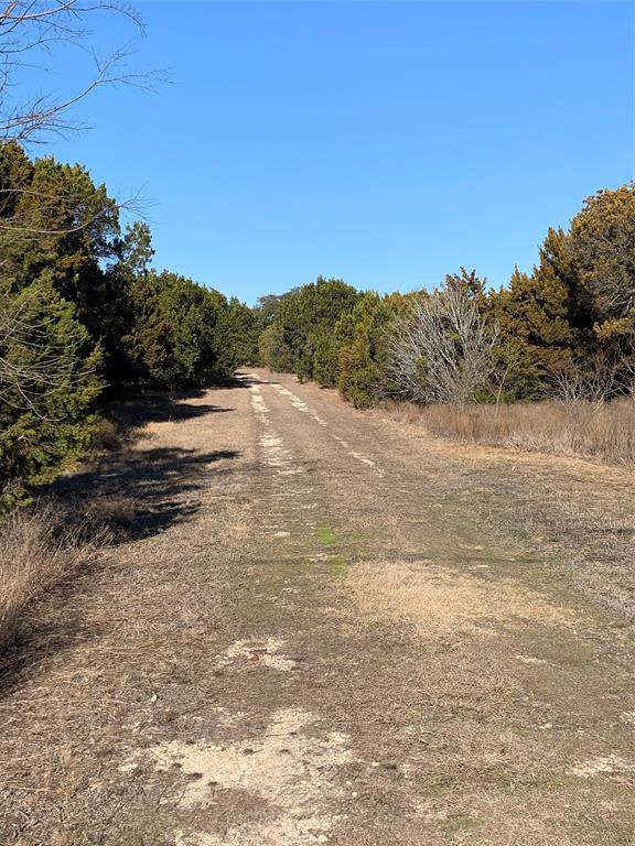 2557 Shady Oaks Circle, Glen Rose, TX 76043 (MLS #14263433) :: The Chad Smith Team