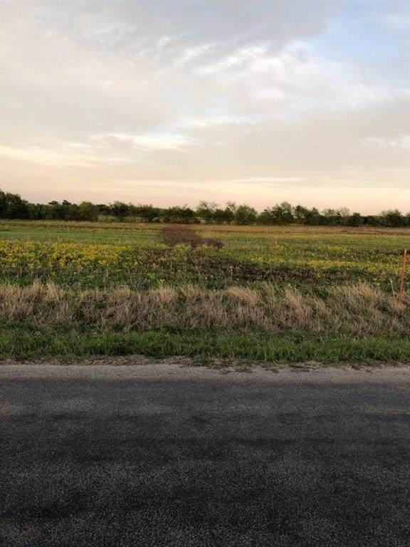 Lot 10 Kincannon, Rhome, TX 76078 (MLS #14263448) :: Justin Bassett Realty