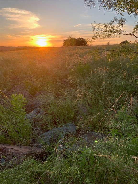 1025 Rio Lobo Trail, Aledo, TX 76008 (MLS #14263546) :: Team Tiller